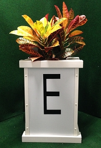DLF18- Dressage Letter Flower Box
